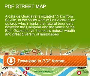 Download street map